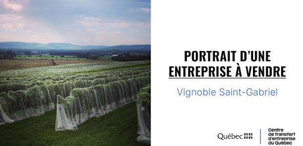Portrait d'une entreprise à vendre : vignoble avec vue dans Lanaudière